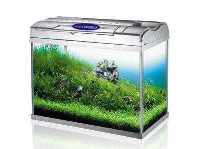 鱼缸过滤器材料 自制鱼缸外置过滤器 diy鱼缸过滤器
